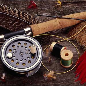 Охотничьи и рыболовные магазины Елово